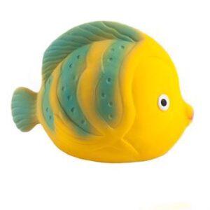 Sommerfuglfisk La